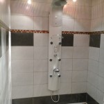 amenagement salle de bain senior (5)